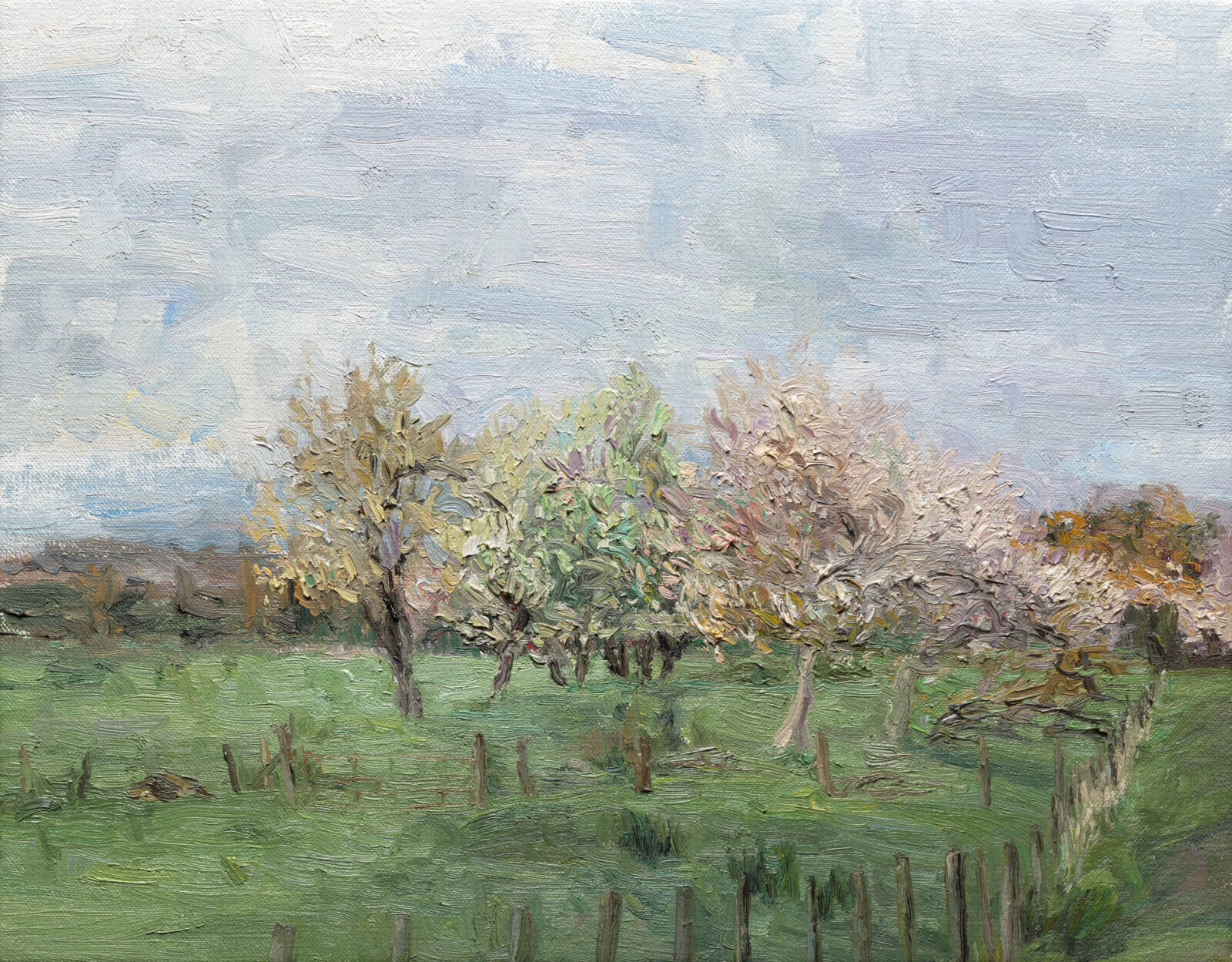 Liza Visagie - Spring Orchard. Oil on Linen 11 x 14 inches