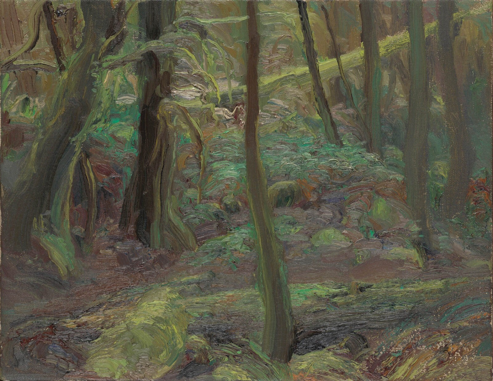 Liza Visagie - Forest Interior. Oil on Linen 10 x 12 inches