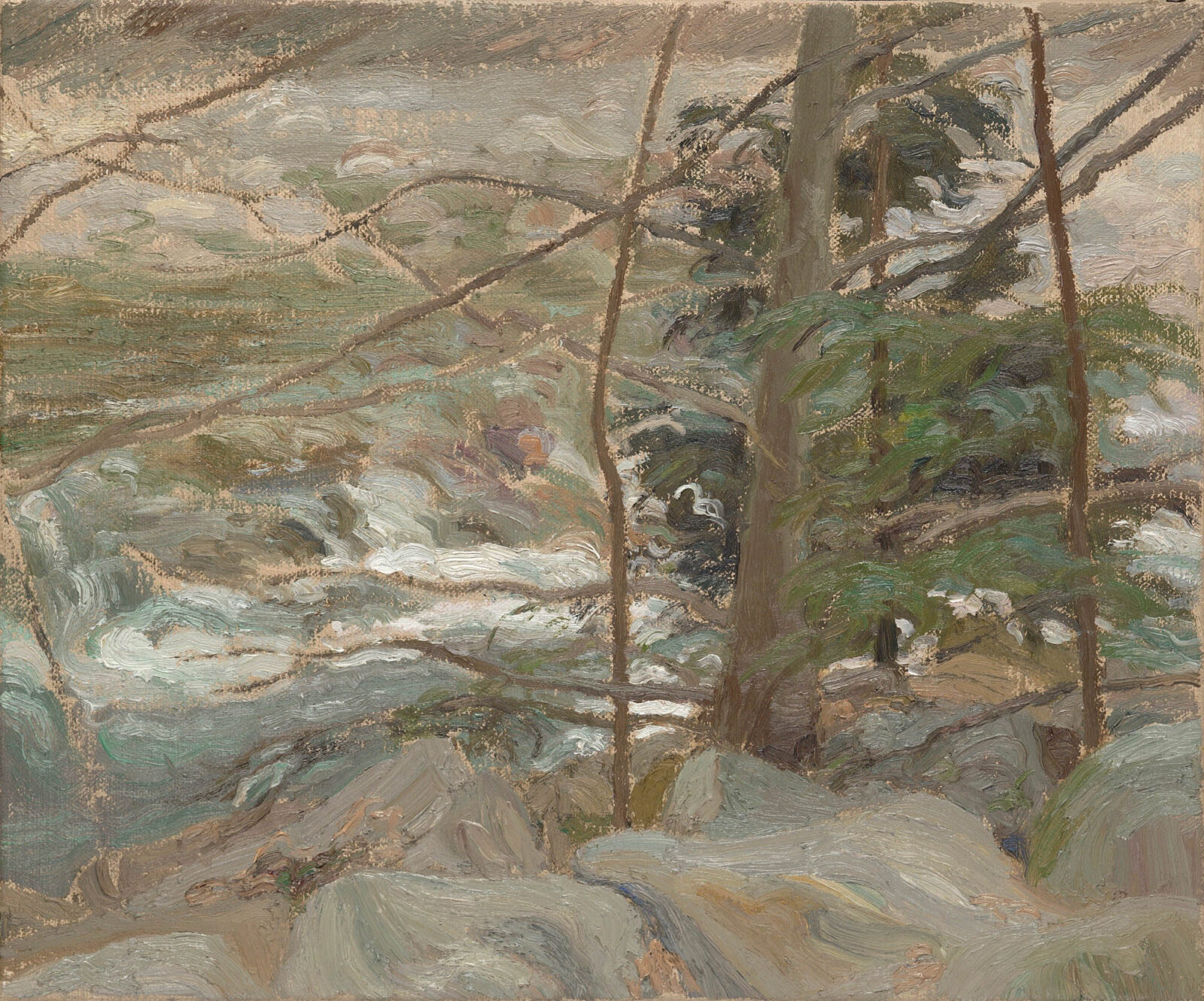 Liza Visagie - Evergreen against the River. Oil on Linen 10 x 12 inches