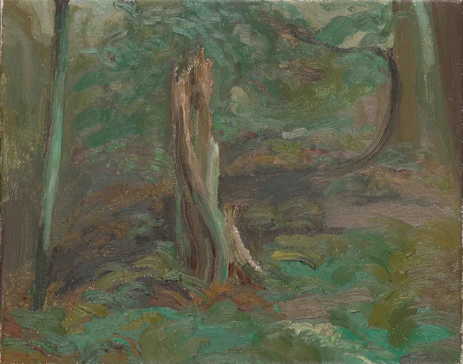 Liza Visagie - Forest Canopy. Oil on Linen 8 x 10 inches