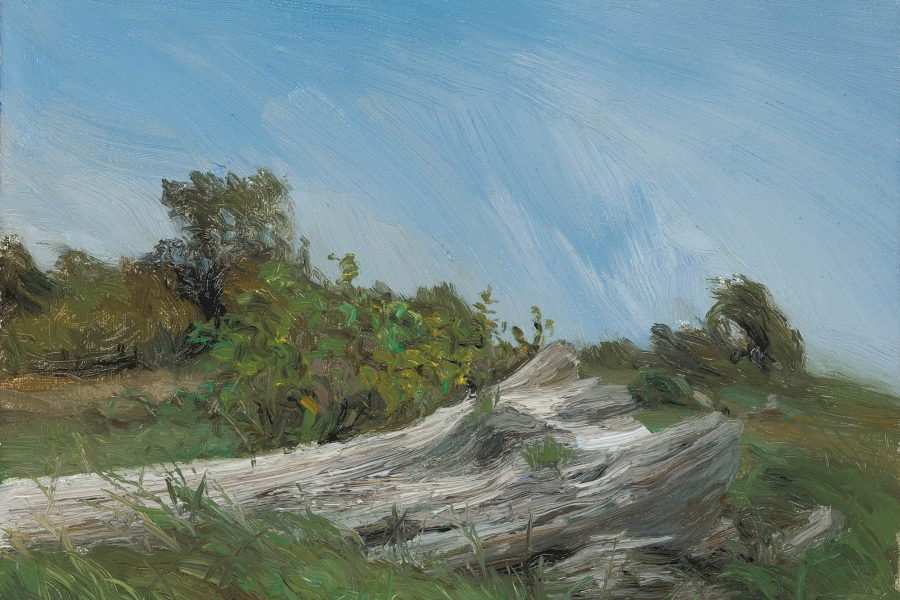 Plein-air Gallery – Summer