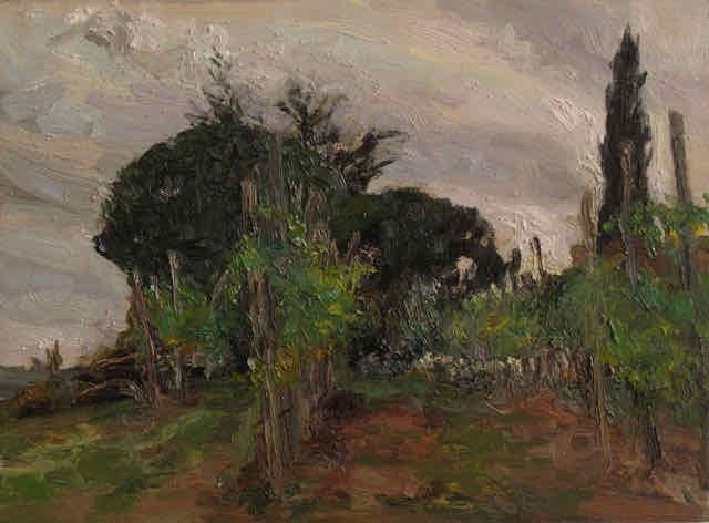 Liza Visagie - Bucine Vineyard. Oil on Board 6 x 8 inches